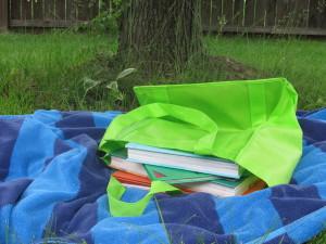 bag of books