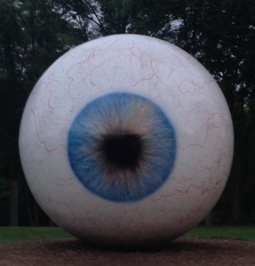 Eye by Tony Tasset - Photo by Carol McAdams Moore 2016