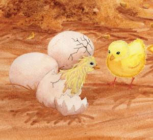 Chick hatching RGB